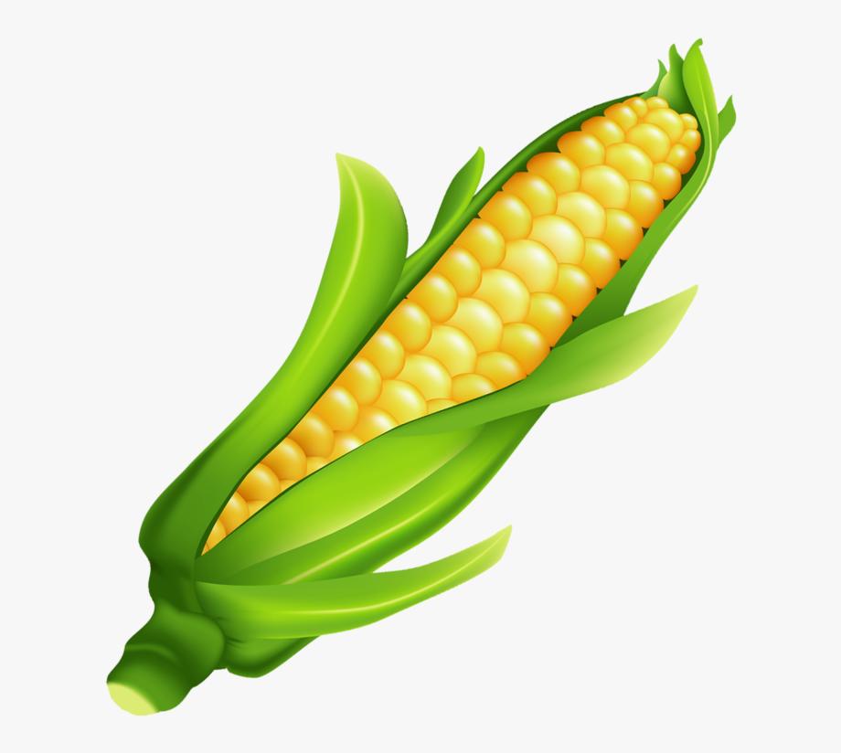 Ear Of Corn Clipart, Cliparts & Cartoons.