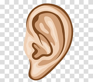 Hearing transparent background PNG cliparts free download.