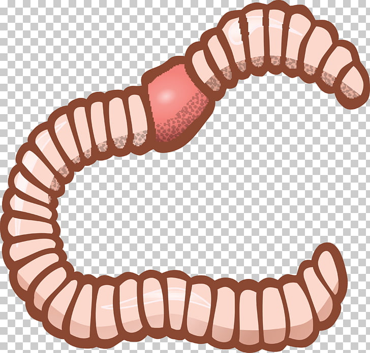 Earthworm , others PNG clipart.