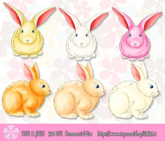 50% OFF Bunny Rabbit Clipart, Bunny Rabbit Clip art, Easter bunny Clipart,  Scrapbooking, Party Invitations, Graphics, Illustration, Download.