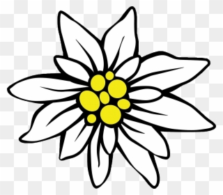 Free PNG Edelweiss Clipart Clip Art Download.
