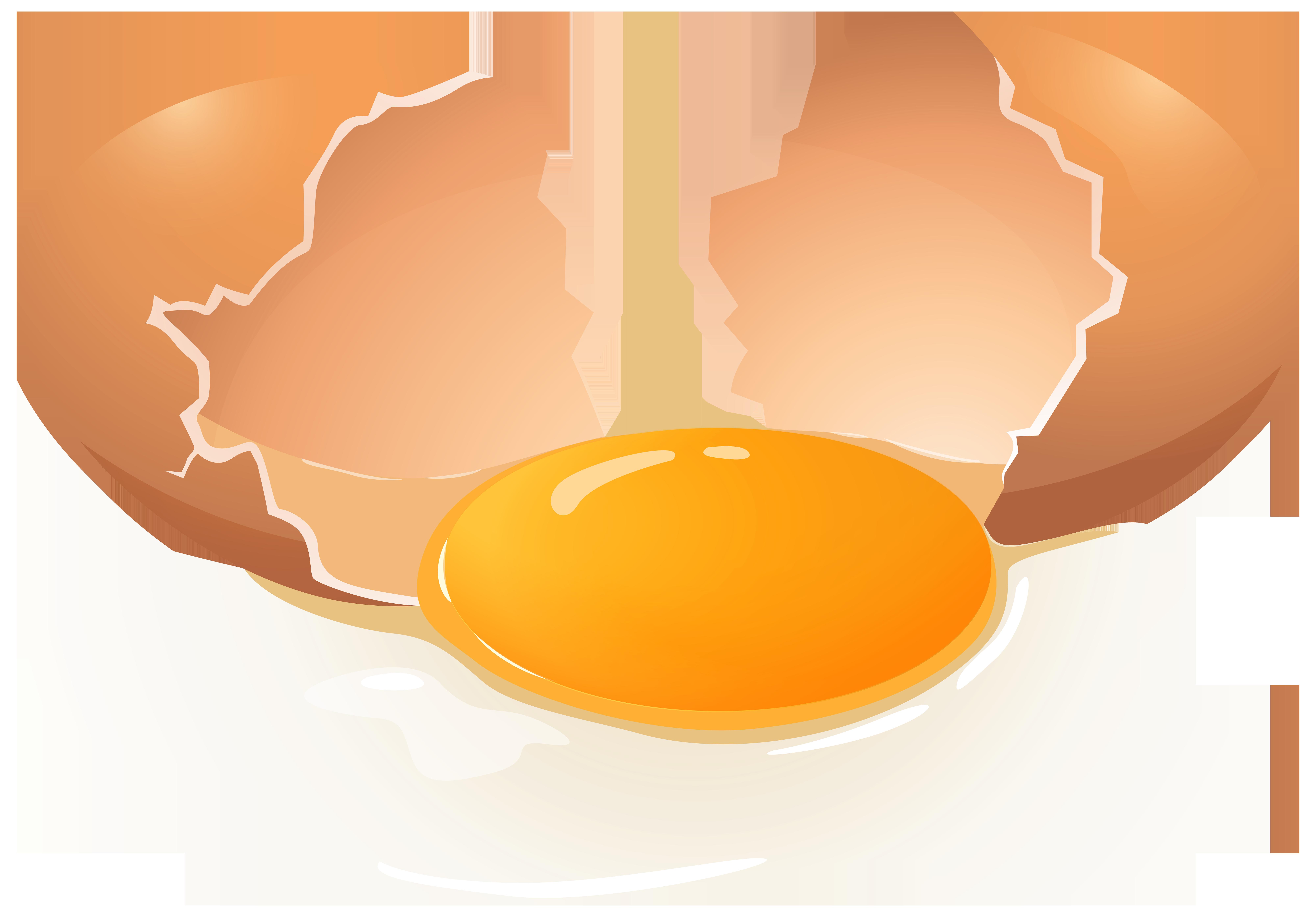 Broken Egg PNG Clip Art.