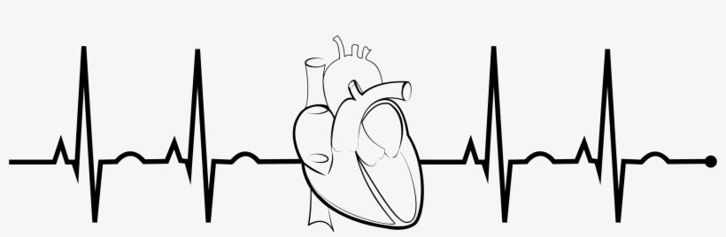 Ekg Realistic Heart Png Free Stock.