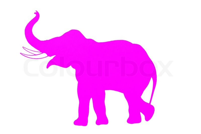 Elephant. Pink silhouette..