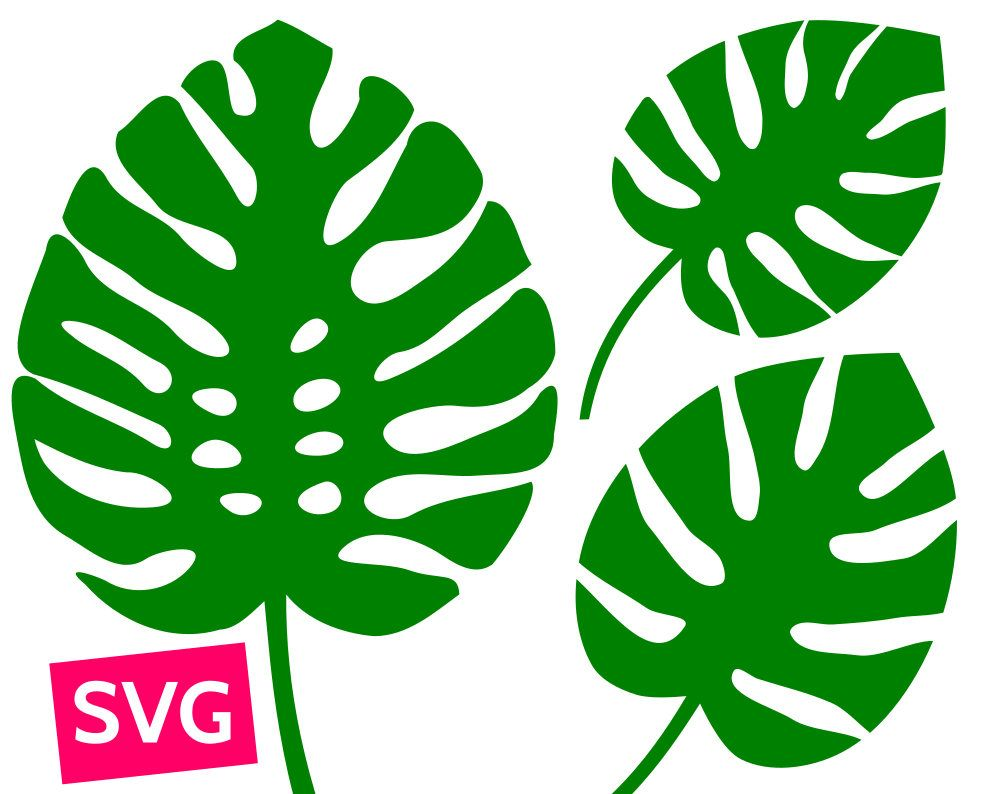 Cuttable and printable Monstera leaf SVG file. PDF clipart.