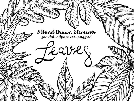 Fall Leaves Clipart. Instant Download. Lithographic, etched.
