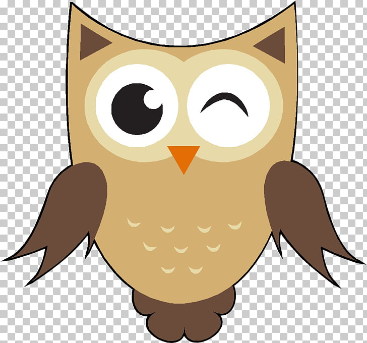 Owl Cartoon , eule PNG clipart.