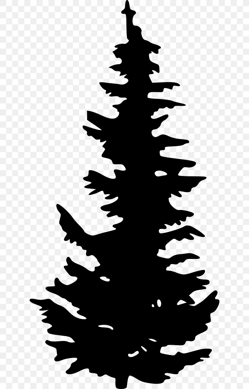 Evergreen Silhouette Tree Pine Clip Art, PNG, 640x1280px.