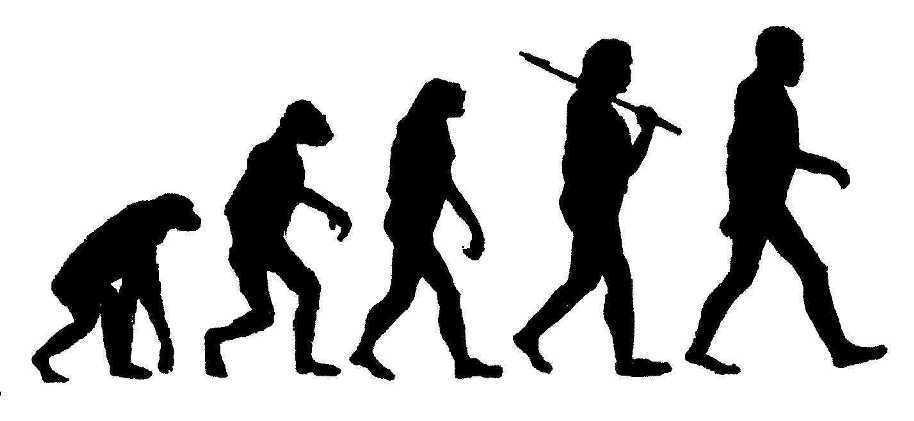 Evolution clipart » Clipart Portal.