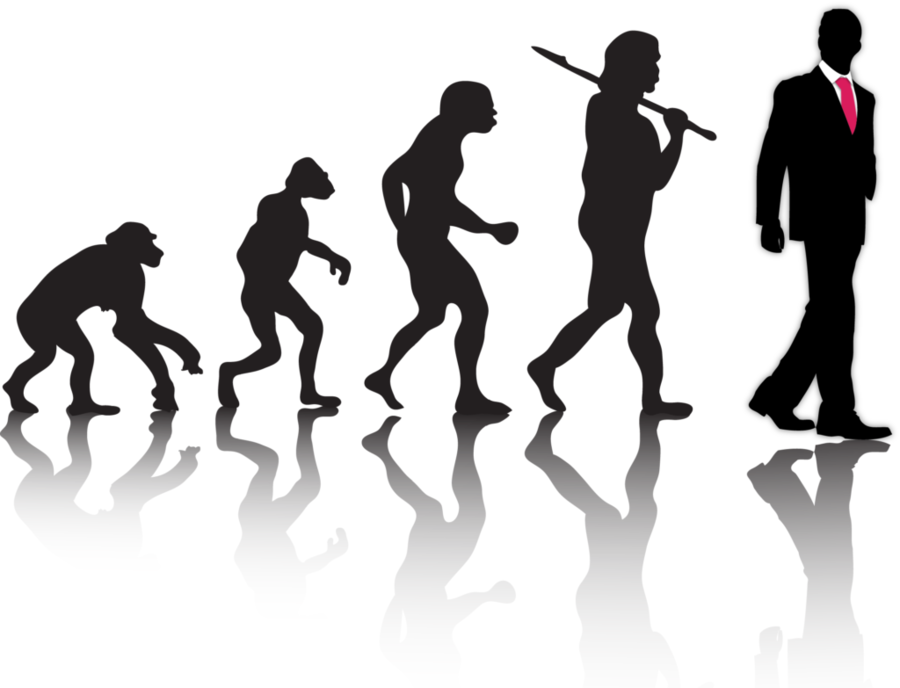 human evolution silhouette clipart Human evolutiontransparent png.