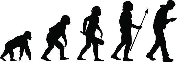 Best Evolution Illustrations, Royalty.