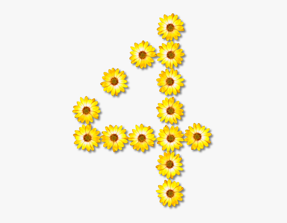 Common Sunflower Number Floral Design Stock Exchange.