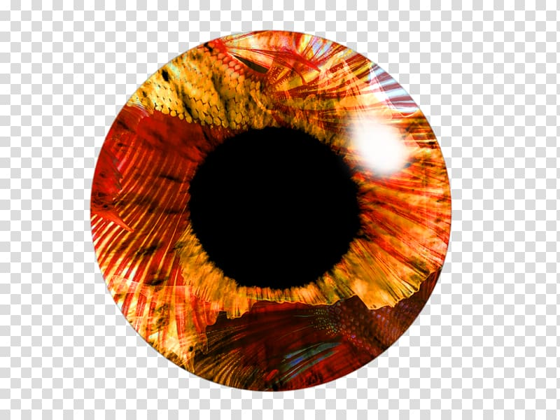 Eye Light PicsArt Studio , LENS transparent background PNG.