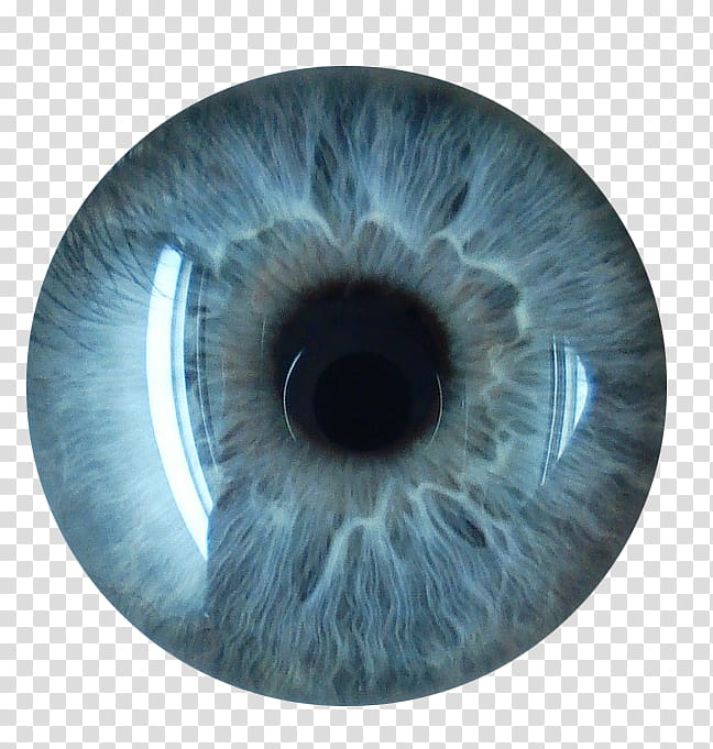 Eye Lenses, white eyeball illustration transparent.