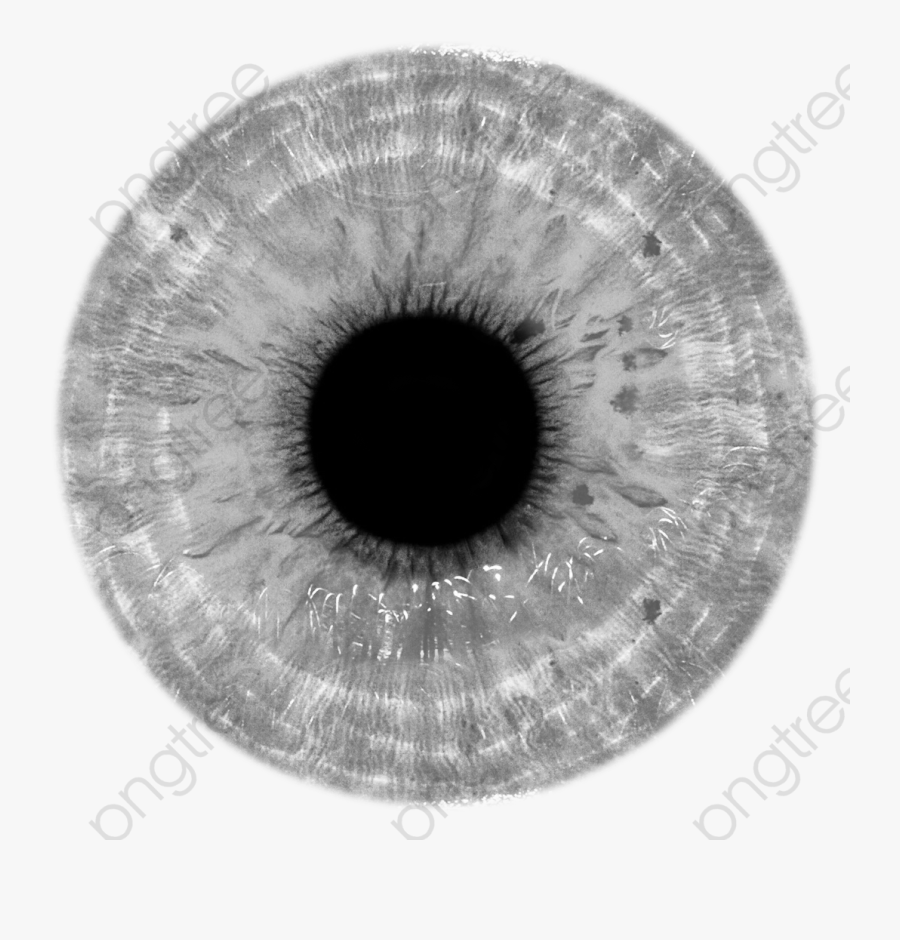 Eye Png Psd.
