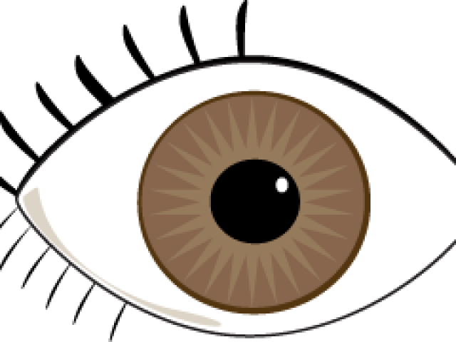 Blue Eyes Clipart Brown Eye.