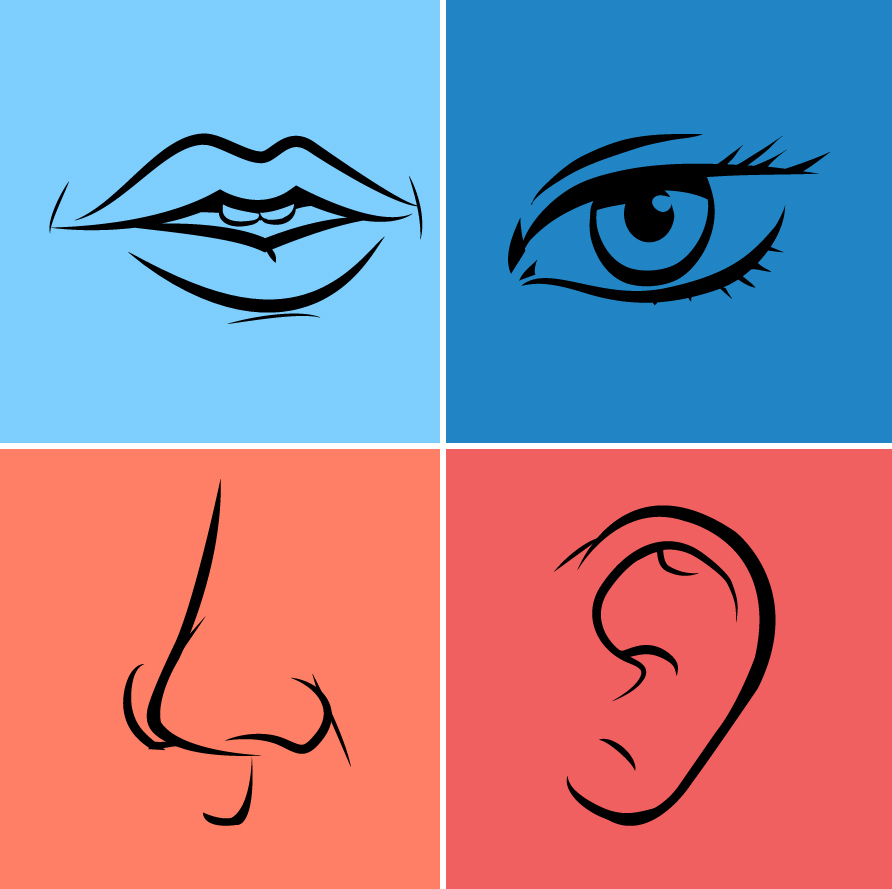 Clipart ear eye, Clipart ear eye Transparent FREE for.