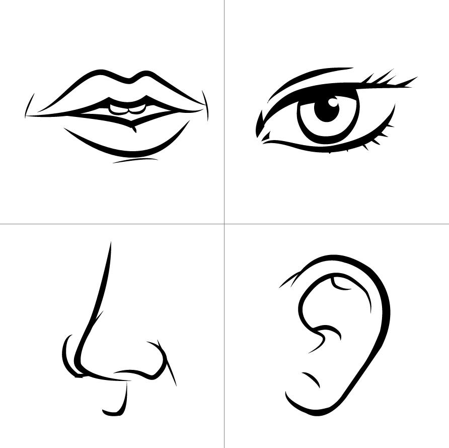 Eye And Ear Clipart.