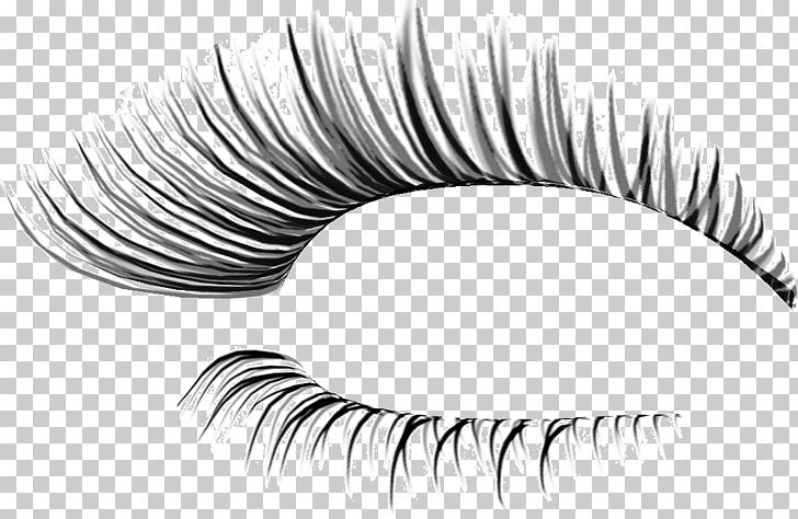 Eyelash extensions Cosmetics , Thick eyelashes thin holiday.