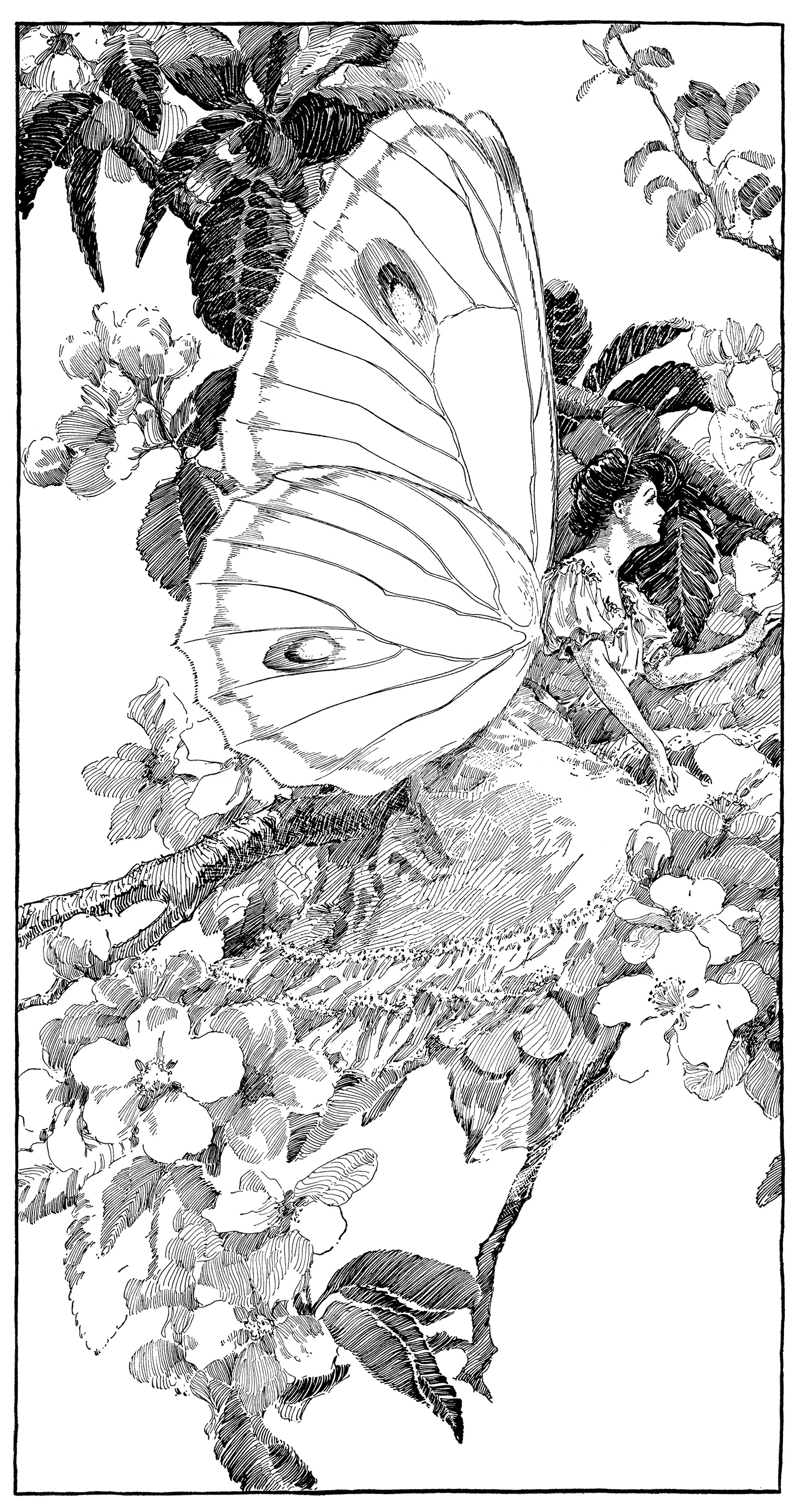 vintage clipart butterfly, printable fairy graphics, digital fairy.
