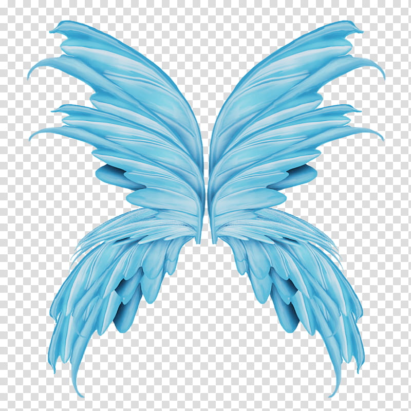 Wings, blue fairy wings art transparent background PNG.