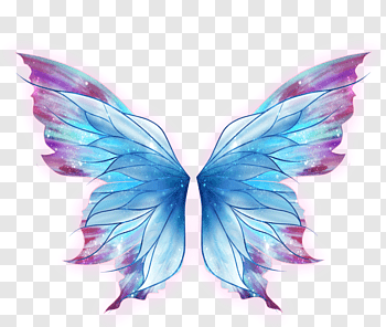 Fairy Wings cutout PNG & clipart images.