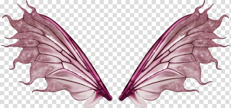Tinker Bell Butterfly Fairy, wings transparent background.
