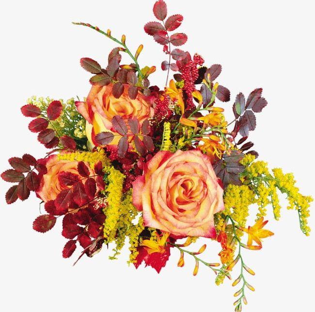 Autumn Roses PNG, Clipart, Autumn, Autumn Clipart, Autumn.