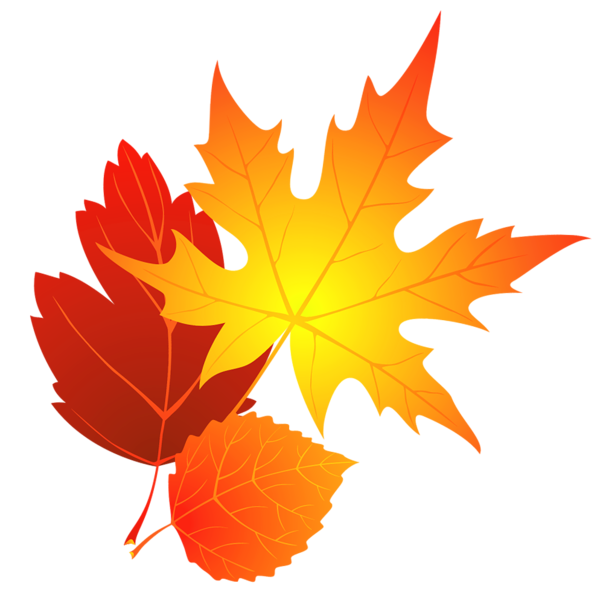 Free Fall Leaf Transparent Background, Download Free Clip.