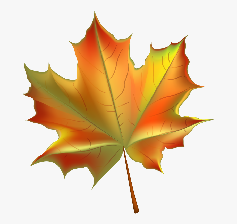 Pin Autumn Leaves Background Clipart.