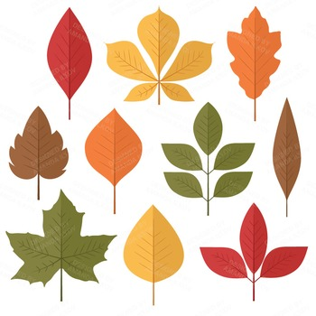 Set of 50 Autumn Leaves Clipart.