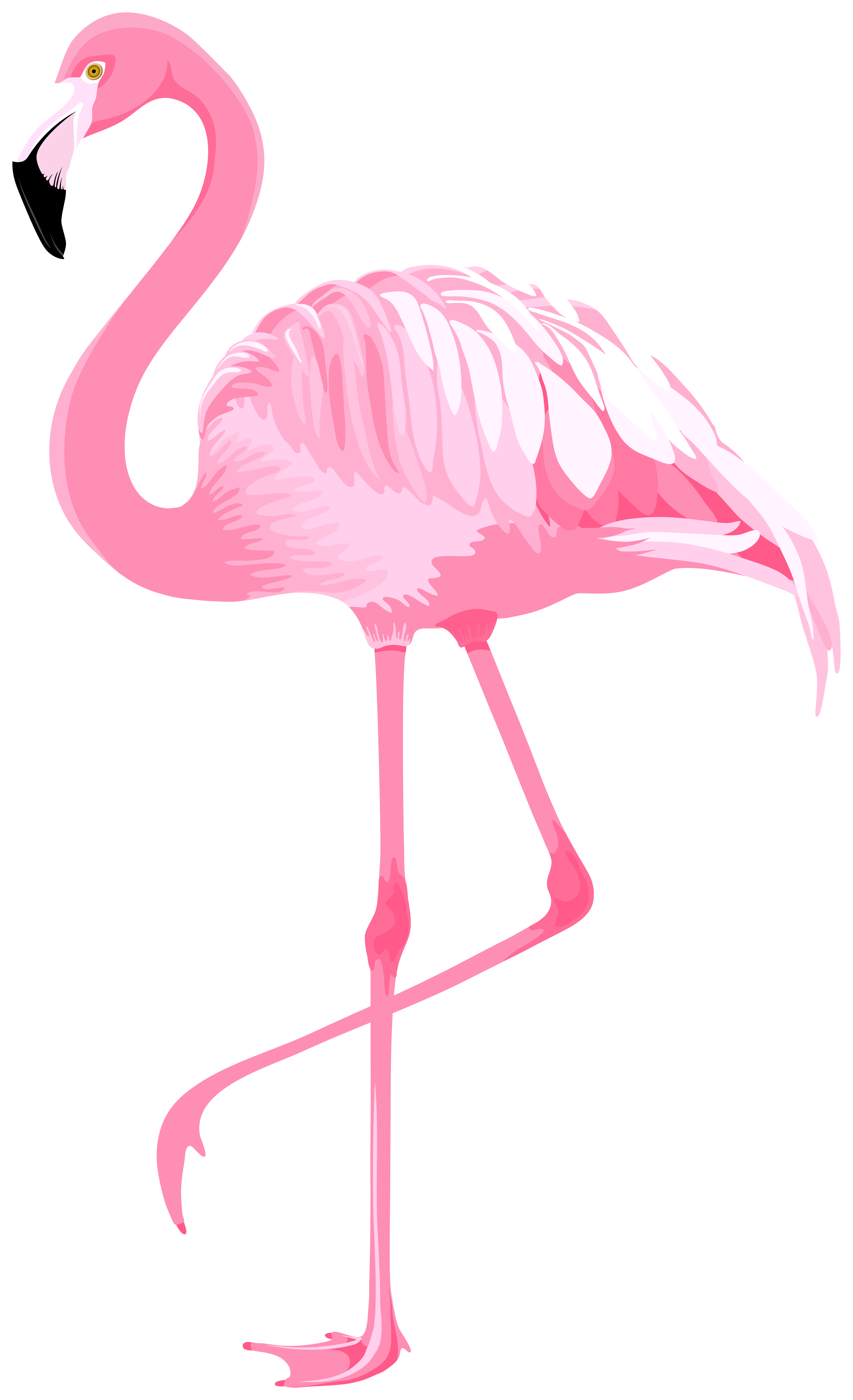 Pink Flamingo PNG Clipart.