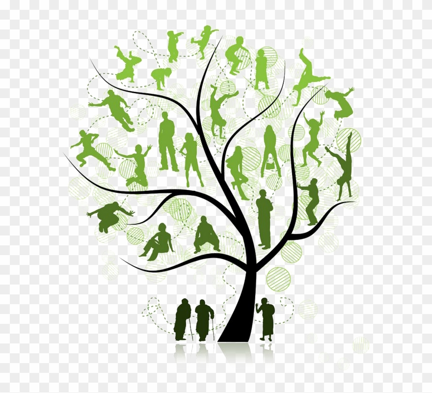 Family Tree Png Pic.