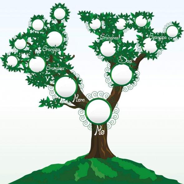 Free Online Family Tree Maker.
