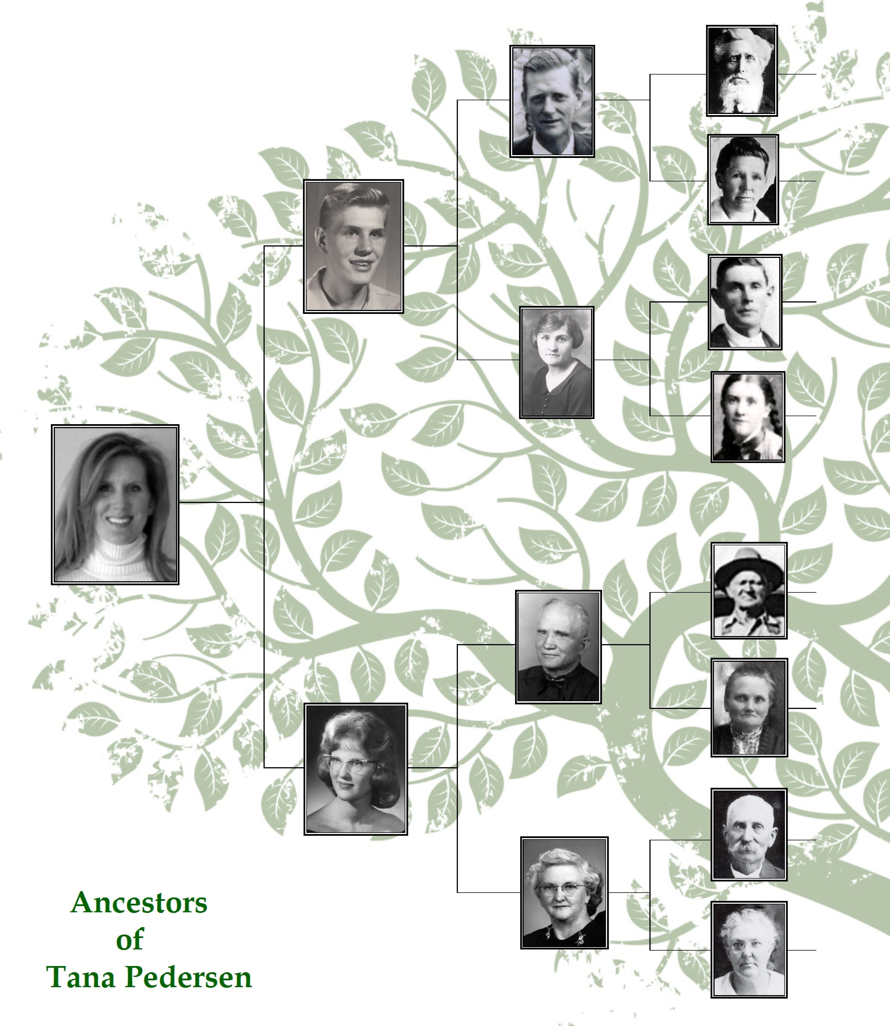 Family Tree Maker: Embellish Your Charts.