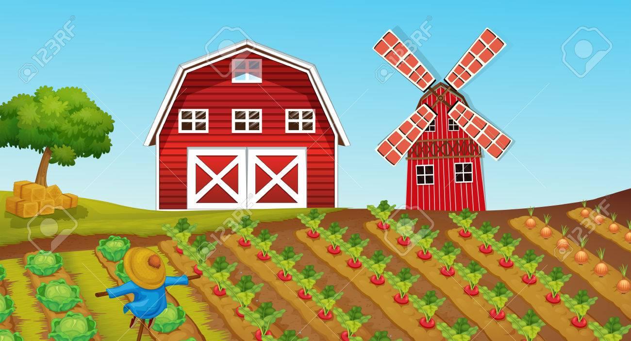 Farmland with crops on the farm » Clipart Station.
