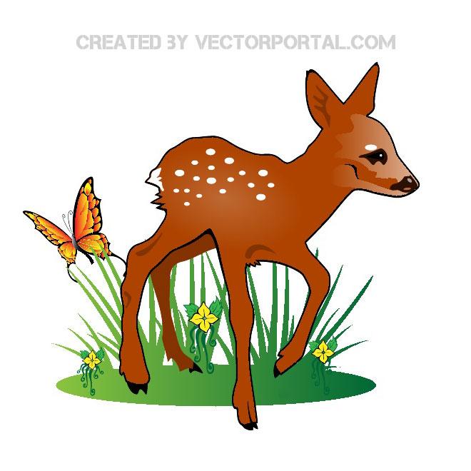 Fawn vector illustration.