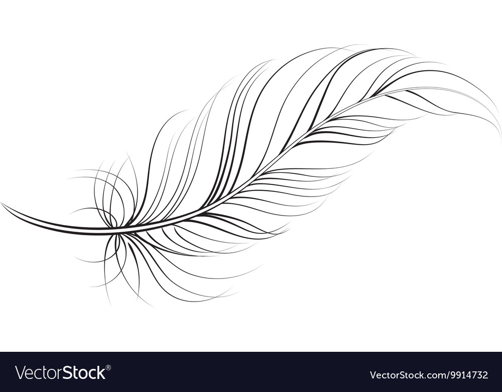 Clip art feather.