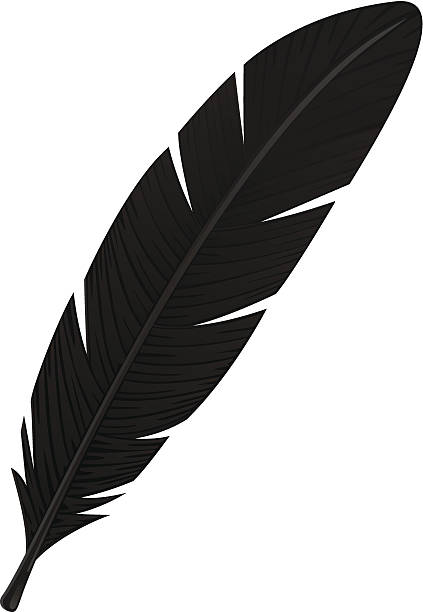 Best Eagle Feather Illustrations, Royalty.