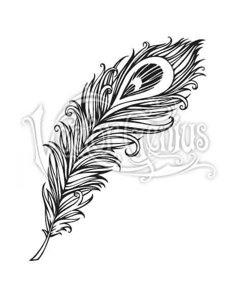 Decorative Peacock Feather ClipArt.
