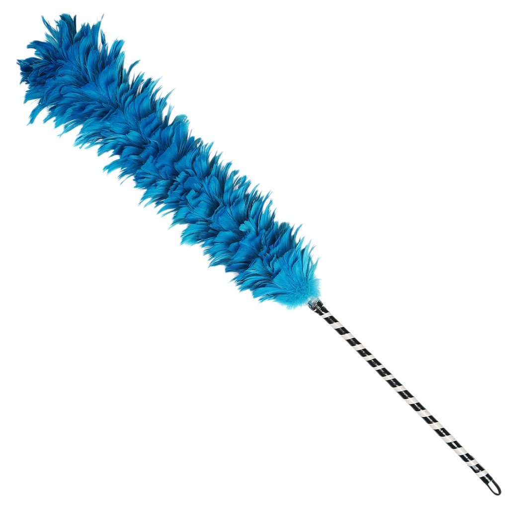 Feather Duster.