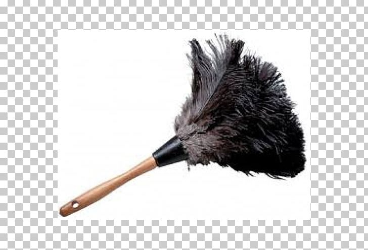 Feather Duster Mop Cleaning PNG, Clipart, Cleaning, Cleaning.