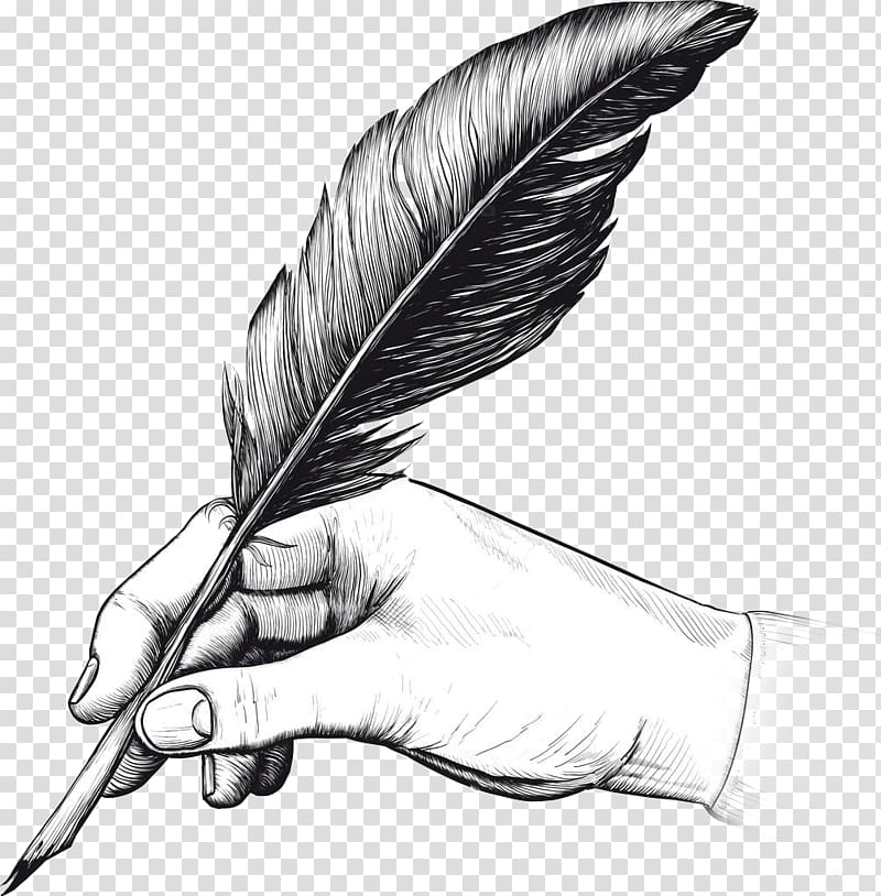 Quill illustration, Quill Fountain pen Drawing Writing.