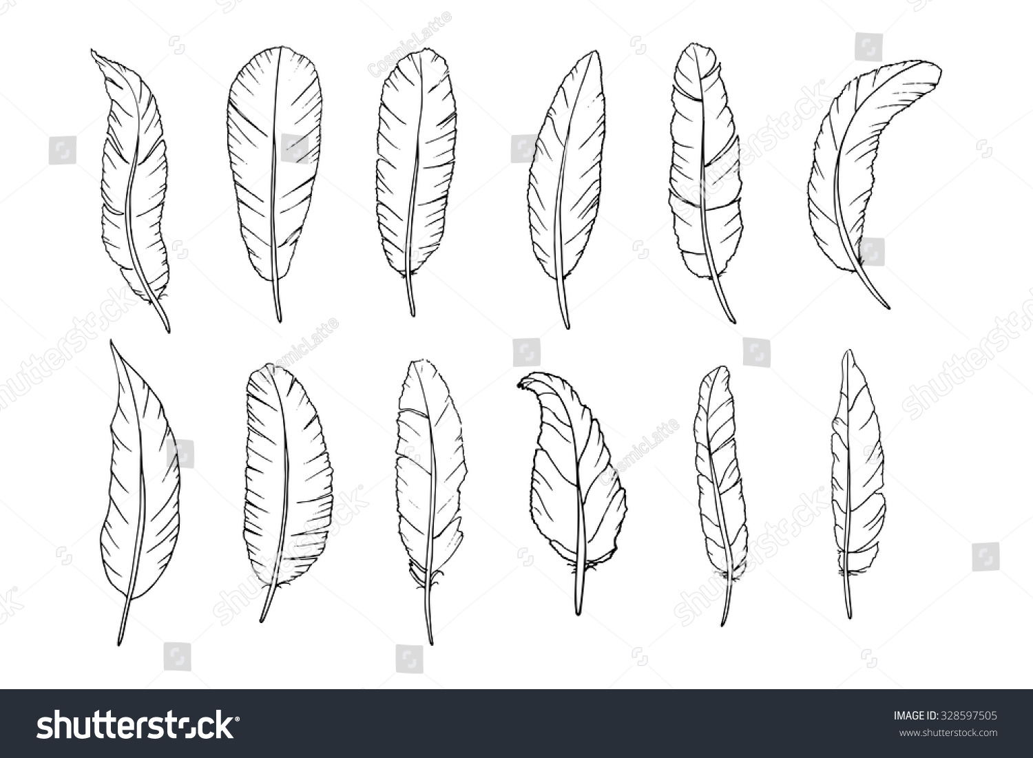 Vector Feathers Clipart Hand Drawn Design Stock Vector (Royalty Free.
