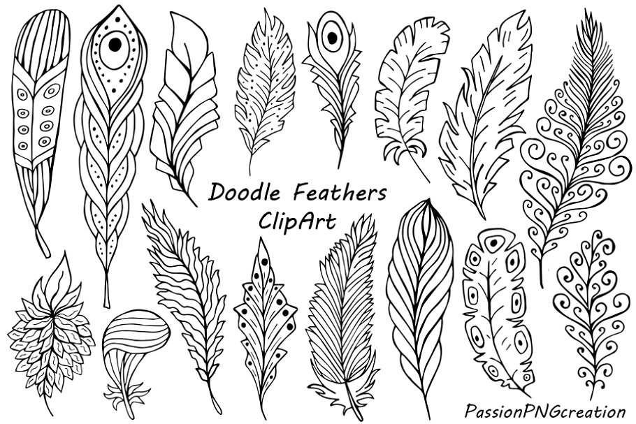 Hand Drawn Feathers Clipart.