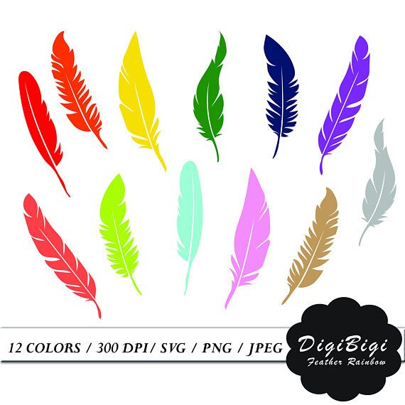 Feather Clipart, Rainbow Feather Clip Art, Clipart Stickers, Feather.