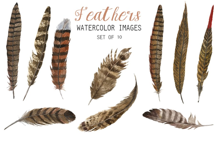 Watercolor Feathers Clipart.