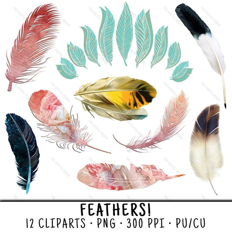 Feather Clipart, Feather Clip Art, Clipart Feather, Clip Art Feather,  Feather PNG, PNG Feather, Clipart Feathers, Bird Feathers.