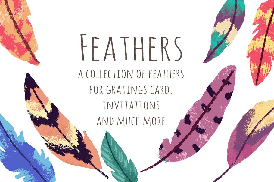 Feathers ClipArt Set.