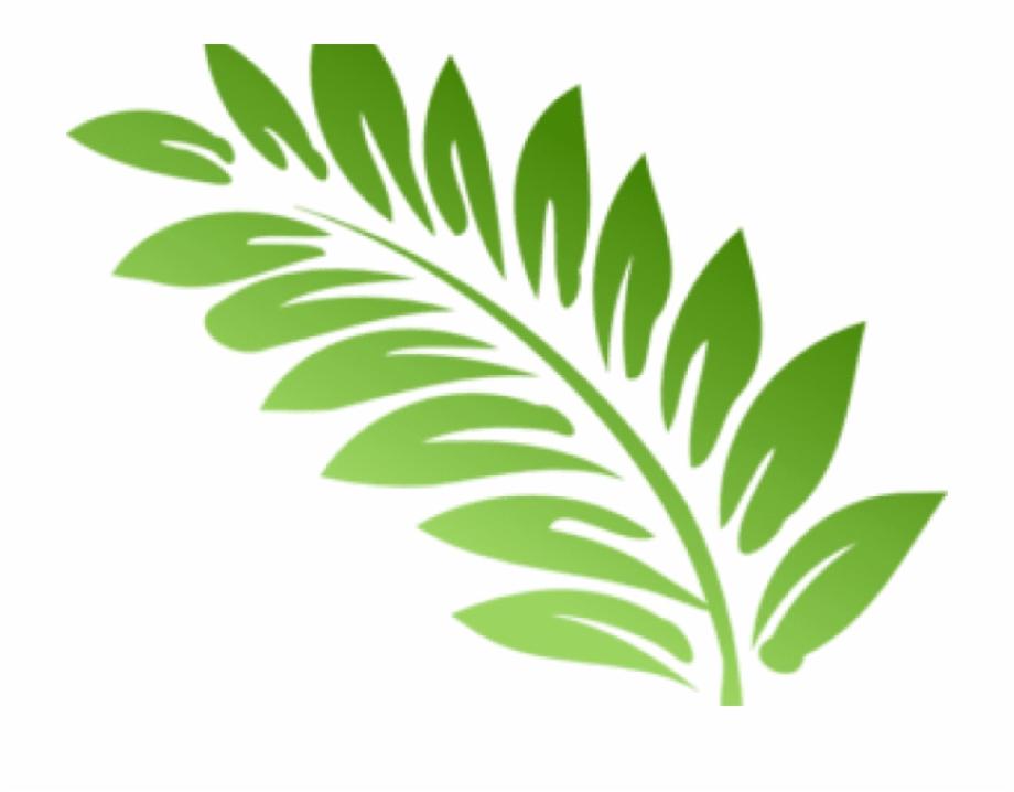 Fern Clipart Foliage.